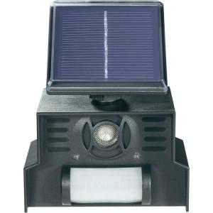 Solar Ultraschall Katzenschreck